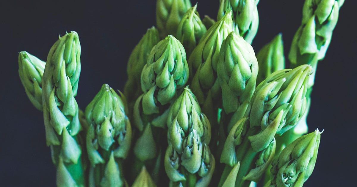 Is Asparagus Keto?