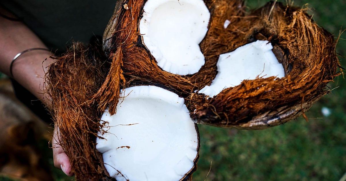 Is Coconut Milk Keto?