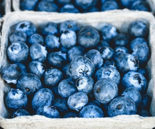 Are Blueberries Keto?
