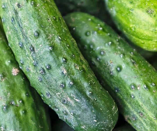 Are Cucumbers Keto?
